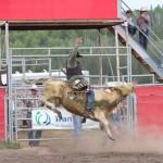Halfway Rodeo