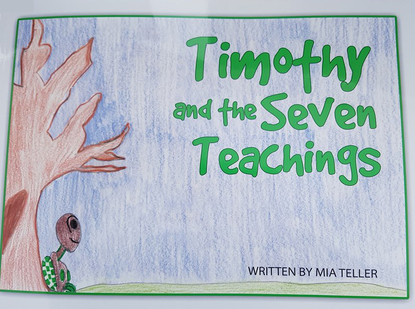 Timothy and the Seven Teachings